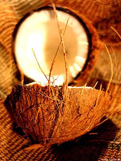 250px-Coconut_art_06