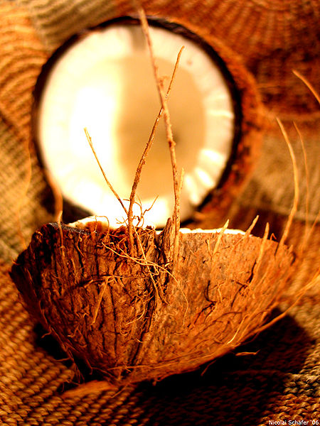 450px Coconut art 06 Le nom des fruits en anglais   The names of the fruits in English