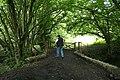 Coleford, at Packsaddle Bridge - geograph.org.uk - 915392.jpg