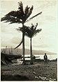 Collectie Nationaal Museum van Wereldculturen TM-60062384 Avondlucht, Port au Prince Haiti fotograaf niet bekend.jpg