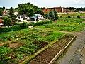 Community garden in Montréal-Nord - panoramio.jpg