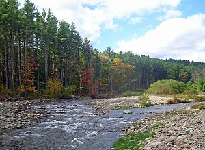 Neversink River - Confluence of east and west branches near Claryville