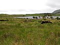 Connemara - Inagh Valley - panoramio (3).jpg
