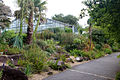 Conservatoire botanique 010715 100.JPG