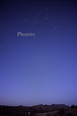 Constellation Phoenix.jpg