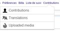 ContentTranslation nouvelle contribution.png