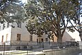 Contrada Castello, 06061 Castiglione del Lago PG, Italy - panoramio (53).jpg