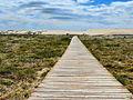 Corrubedo-Camino a la duna (6001305664).jpg