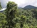 Costa Rica (6110157825).jpg