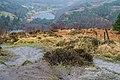 County Wicklow - Glendalough - 20190219021926.jpg