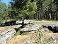 Coyolles (60), la cave du Diable en forêt de Retz 9.jpg