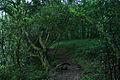 Cruce de ríos (4617412935).jpg