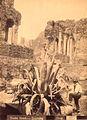 Crupi, Giovanni (1849-1925) - n. 0198 - Teatro Greco - Taormina.jpg