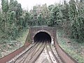 Crystal Palace Tunnel - geograph.org.uk - 351170.jpg