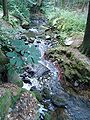 Dürrhennersdorfer Wasser Mike-Krüger 080726 1.JPG