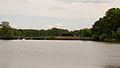 D32 Dippelsdorfer Teich Naturschutzgebiet (11).jpg