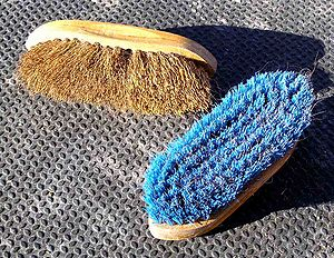 Horse grooming - Dandy brushes