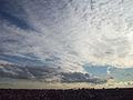 De Madrid al cielo 144.jpg