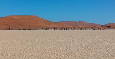 Dead Vlei, Sossusvlei, Namibia, 2018-08-06, DD 060.jpg