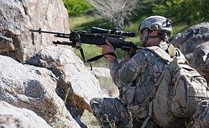 Mk 14 Enhanced Battle Rifle