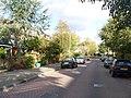 Delft - Wilhelminalaan - panoramio - StevenL.jpg