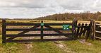 Delleboersterheide – Catspoele Natuurgebied van It Fryske Gea. Omgeving van het heideveld 020.jpg