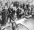 Delovi 2. proleterske divizije na Sutjesci.jpg