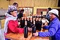 Die Mas vineyard, Wine Route, Upington, Northern Cape, South Africa (20353253240).jpg