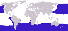 alt=Description de l'image Diomedeidae distribution.png.