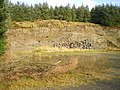 Disused quarry beside the forest track - geograph.org.uk - 1591403.jpg