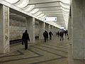 Domodedovskaya (Домодедовская) (5476852060).jpg