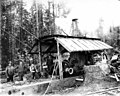 Donkey engine and crew, Vance Lumber Company, near Malone, ca 1916 (KINSEY 1339).jpeg
