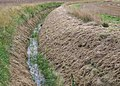 Drainage ditch - geograph.org.uk - 933773.jpg