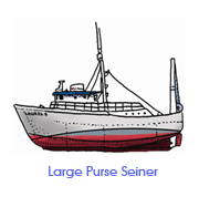 Drawing of a large purse seiner