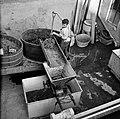 Druiventrossen worden in een ontsteler geschept alvorens ze worden geperst, Bestanddeelnr 254-4212.jpg