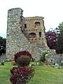 Drumin Castle - geograph.org.uk - 454295.jpg