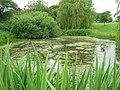Duck Pond, Fimber - geograph.org.uk - 1374923.jpg