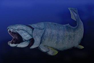 Devonian - Image: Dunkleosteus BW