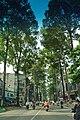 Duong ly thuong kiet, cay xanh, q10,hcmvn - panoramio.jpg