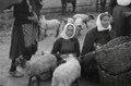 ETH-BIB-Frauen in Tracht bei Jajce, Bosnien-Weitere-LBS MH02-48-0050.tif