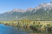 Earl Mountains NZ 04.jpg