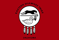 Eastern shawnee flag.jpg