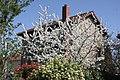 Eaubonne , les belles meulières du quartier Paul Bert - panoramio (50).jpg
