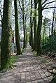 Ede, Netherlands - panoramio (12).jpg