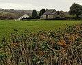 Edge of Cwm Farm from Cwm Lane - geograph.org.uk - 1588349.jpg