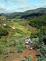 Entre Mantasoa et Carion, Madagascar (25985513122).jpg
