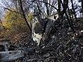 Execuflight Flight 1526 wreckage 3.jpg