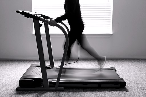 Exercise Treadmill Convey Motion