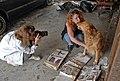 FEMA - 21587 - Photograph by Marvin Nauman taken on 01-21-2006 in Louisiana.jpg