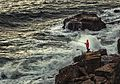 Face à la mer (23045179865).jpg